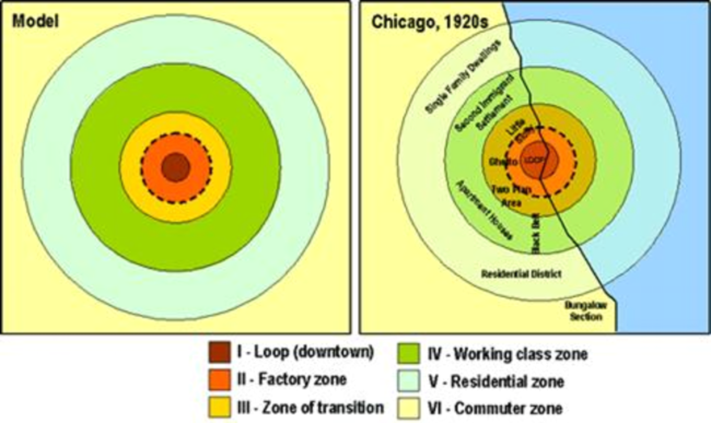 Burgess's concentric model of urban geography.